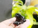 Tượng Chó màu đen GM141-11