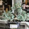 Cây tài lộc gốc đẹp thạch anh xanh trung KC081