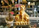 Chó săn vàng bên như ý C029A