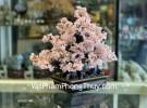 Cây thạch anh hồng lớn hạt nhỏ dáng thịnh vượng KC109