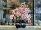 Cây tài lộc thạch anh hồng, thân bonsai KC120