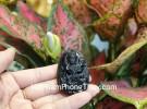 Phật Phổ Hiền Bồ Tát (tuổi Thìn + Tỵ) đá hắc ngà S6844-4