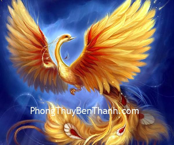 3ddb35c28ahoang.jpg Đàn ông độc thân và biểu tượng chim phượng hoàng