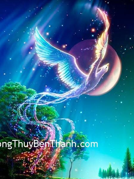 27e9fc933dghoang.jpg Cải thiện vận may với phượng hoàng linh thiêng