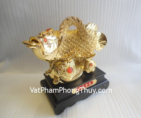 ca chep a196 1 Hong Kong feng shui gold dragon fish A196