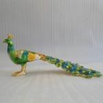 chim cong a175 01 150x150 Chim công ngũ sắc xanh A175