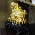 c086a long quy vang lon 2 150x150 Long quy lưng vàng trên đế gỗ C086A