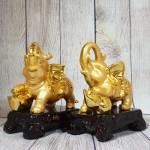 ln180 song de voi vang 150x150 Song đế voi vàng lưng hồng châu LN180